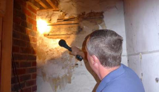Our specialist surveyor inspecting the property for timber and damp defects