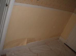 Rising damp on an internal wall