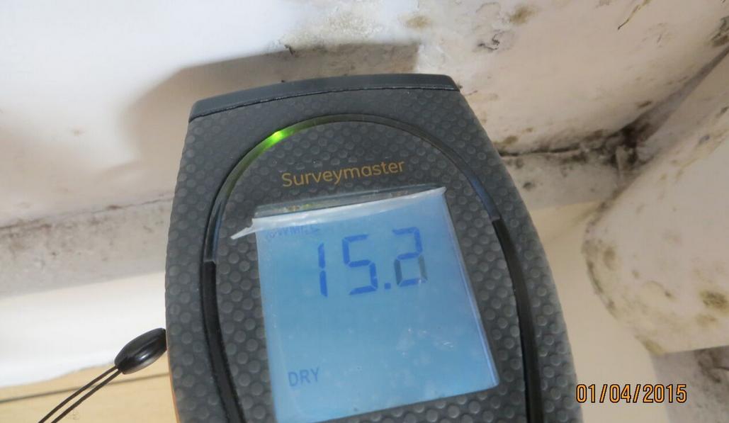 Moisture meter reading 'Dry'