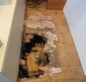 Floor damage caused by Dry-Rot
